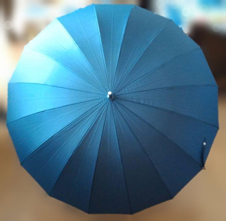 一太郎30周年記念 16本骨傘 凪(なぎ)』 開いた傘